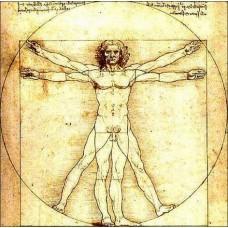Magnetka Da Vinci - Vitruviánsky muž